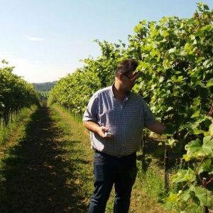 Weingut Sutter, Hohenwarth, ACT Austria Partner, Wein- und Genusserlebnis Oeterreich, Weingarten mit Leopold