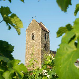 Winzervereinigung Die Hohenwarther, ACT Austria Partner, Wein- und Genusserlebnis Österreich, Region Hohenwarth